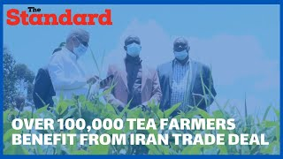 Over 100,000 tea farmers from Bomet to benefit from Iran tea trade deal