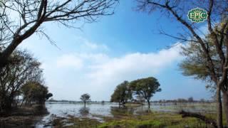 Saawan Beeta - Anuraag Dhoundeyal