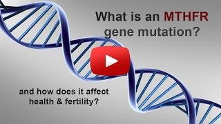 MTHFR Gene Mutation Webinar with Leslie Brown