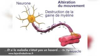 Sclérose en plaques avec le Dr Pierre-Jean Thomas-Lamotte