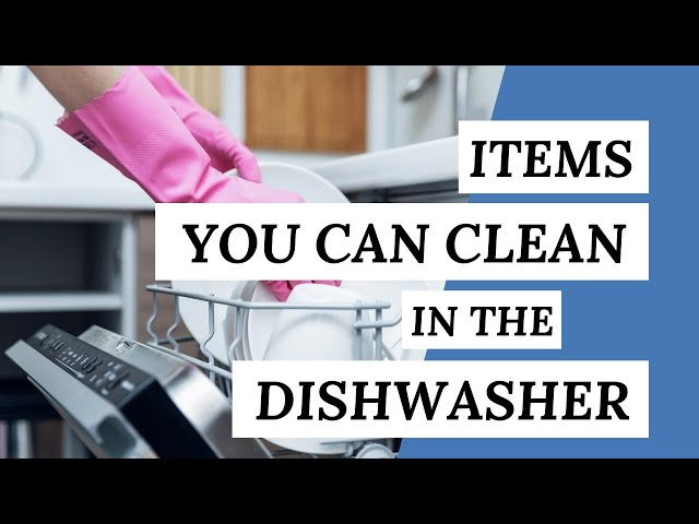 Items You Can CLEAN IN THE DISHWASHER (Cleaning Tips)