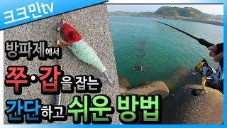 쭈꾸미 갑오징어 워킹 낚시 / 홍원항 방파제