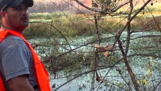 Squatch Unlimited - Show the creeks that run through the Sulphur River Bottoms