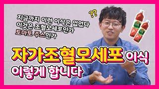 자가조혈모세포 이식 후의 이야기 (투병일기 리뷰 #11…