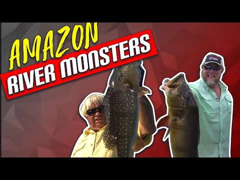 monster-peacock-bass---amazon-river-monsters