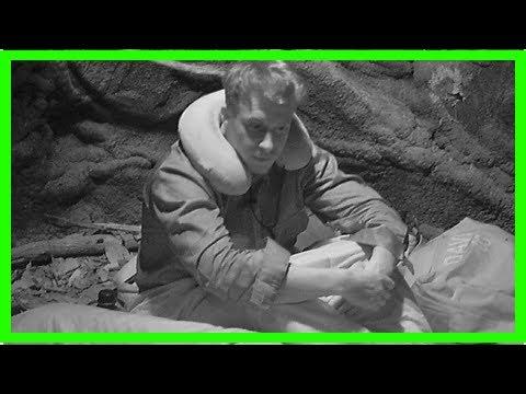 Dschungelcamp: David Friedrich