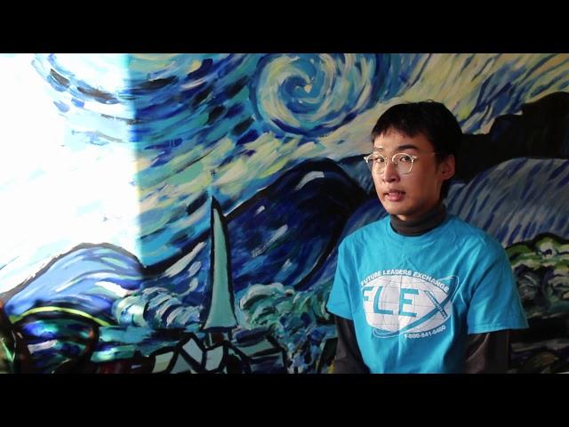 """The Starry Room"" Project - Tasihir Amar '20"
