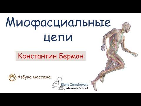 Миофасциальные цепи. Анатомические поезда | Константин Берман | Азбука массажа