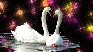 Два берега любви -  Песня трогает душу до слёз