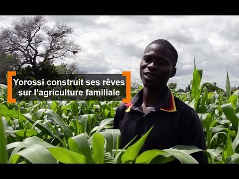 Burkina Faso : Yorossi construit ses rêves sur l'agriculture f...