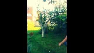 Chudnov. Ice Bucket Challenge(, 2014-09-08T16:47:47.000Z)