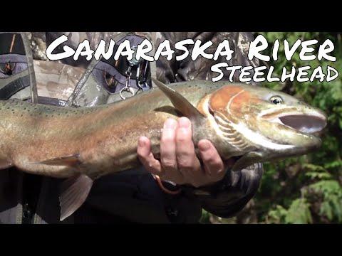 Fishing Ganaraska River For Steelhead | Fish'n Canada