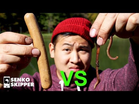 Best Fishing Bait? Hotdogs VS Worms! (Fishing Park BIRTHDAY SPECIAL! )