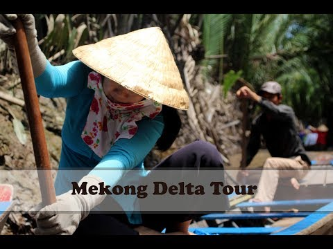 Mekong Delta Tour: Sampan Boat Ride, Bee and Coconut Farms