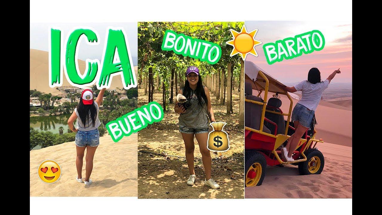 Download LAS FIJAS DE ICA: BUENO, BONITO Y BARATO 🚐🌅🍷   MPV