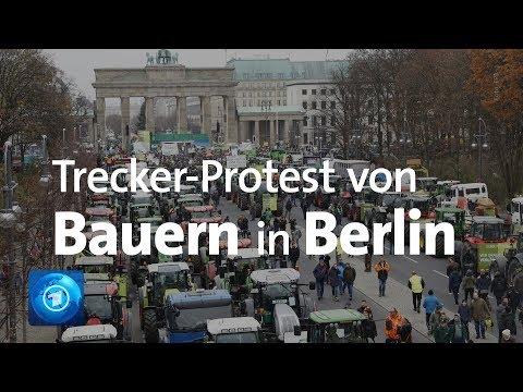 Protestierende Bauern Buhen Umweltministerin Schulze In Berlin Aus