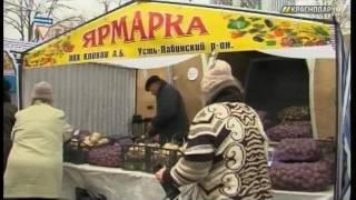 В Краснодаре возобновят работу ярмарки выходного дня