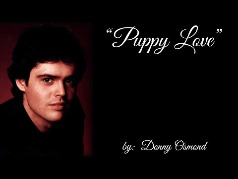 Puppy Love (w/lyrics)  ~  Donny Osmond