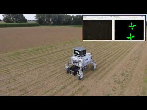 ICRA'2018: Real-time Semantic Segmentation of Crop and Weed for Precision  Agriculture Robots