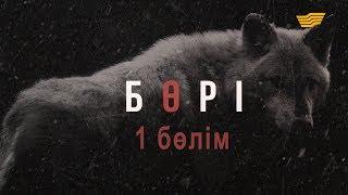 «Бөрі» 1 бөлім / «Бори» 1 серия