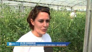 Société : des salariés deviennent jardiniers le temps d'une action solidaire