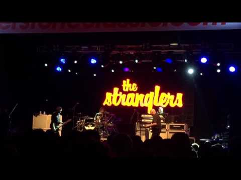 The stranglers, girl I want to be with you
