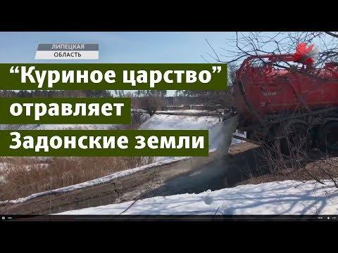 """""""Куриное царство"""" отравляет земли Задонского района"""