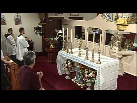 Daily Catholic Mass - 2015-11-02 - Fr. Miguel