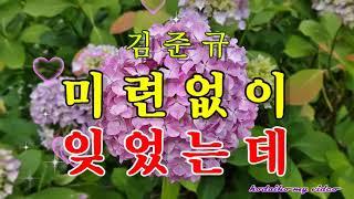 Cover images 김준규  ☆  미련없이 잊었는데