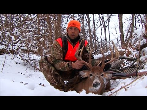 Whitetail Edge: 143