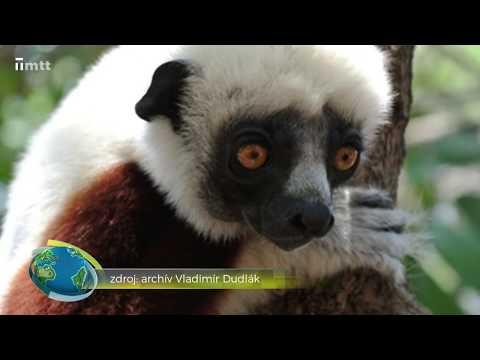 Cesta okolo sveta - Madagaskar
