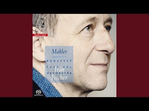 Symphony No. 9 In D Major: I: Andante Comodo