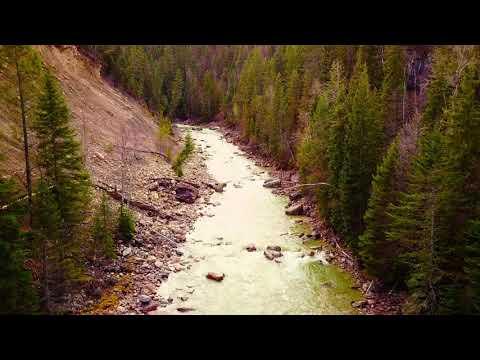Flying upstream