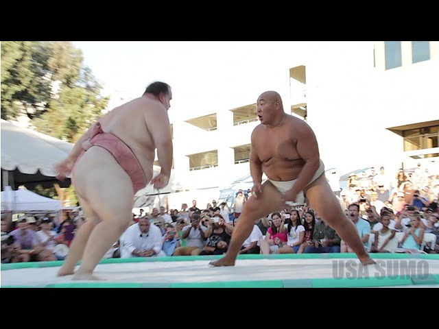 INSANE SUMO HIGHLIGHT    Fat Guy In Diaper Slams Other Fat Guy In Diaper   TMZ com TMZ com