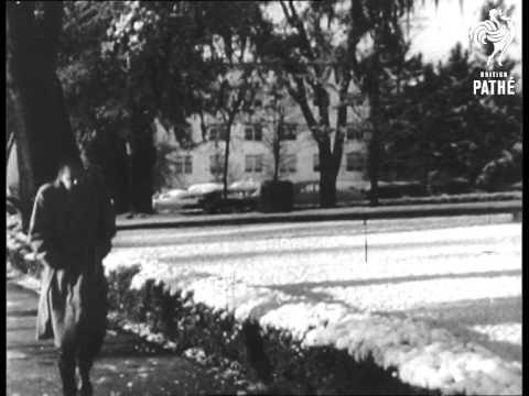 Snowstorm In Florida (1958)