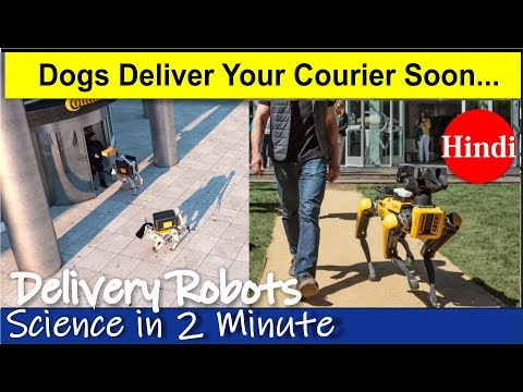 Dogs deliver courier in self-driving cars || Science in 2 Minutes