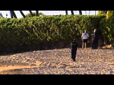 Shark attack Hero Teacher Saves Tourist