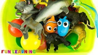 Learn Colors Wild Zoo Animals Toys Names For Kids with Fun Box of Toys Educational Video