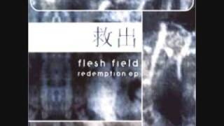 Watch Flesh Field Redemption The Aftermath video