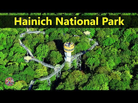Best Tourist Attractions Places To Travel In Germany | Hainich National ParkDestination Spot