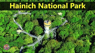 Best Tourist Attractions Places To Travel In Germany | Hainich National Park Destination Spot
