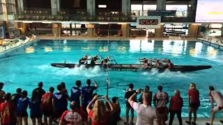Polish Dragon Boat Rowing: Tug Of Oar Edition