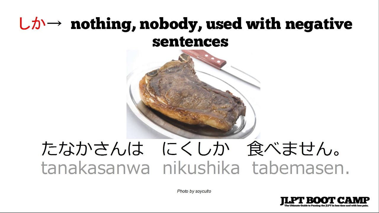 JLPT N5 Grammar: The Japanese particles あまり, しか, and だけ