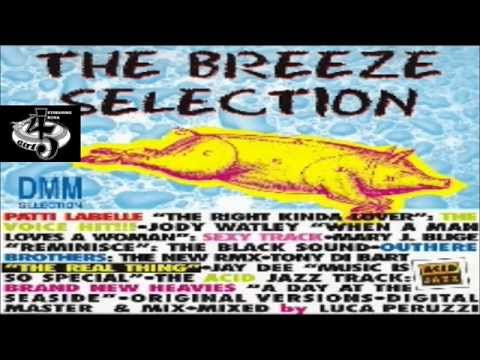 The Breeze Selection  Various ‎1994