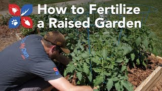 Do My Own Gardening - How to Fertilize a Garden