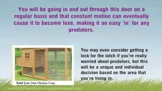 How To Build A Chicken Enclosure Properly - 4 Ways To Guard Against Predators