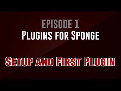 [Plugins for Sponge] Episode 1: Setup and First Plugin