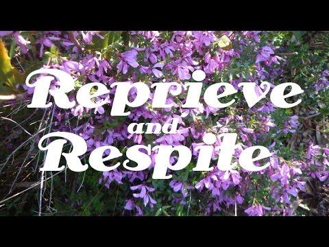 Reprieve and Respite | Chronic Aches | Pain | Relief | Isochronic Tones | Binaural Beats