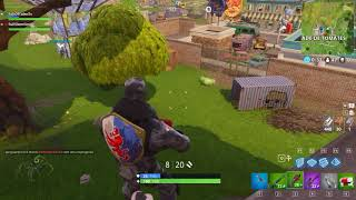 Another little birdie caught on the flight! Fortnite