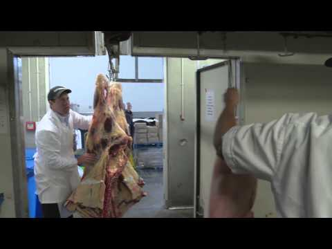 A Career in the Retail Meat Industry (JTJS92014)